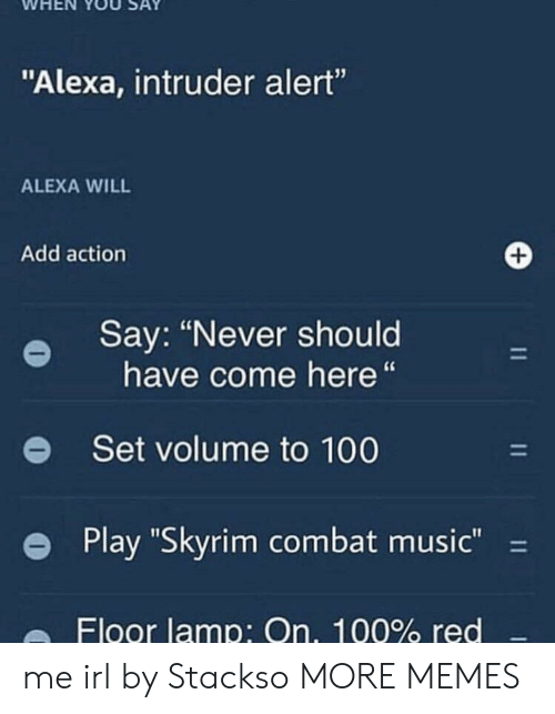 """Anaconda, Dank, and Memes: WHEN YOU SAY  """"Alexa, intruder alert""""  ALEXA WILL  Add action  Say: """"Never should  have come here""""  e  Set volume to 100  e Play """"Skyrim combat music-  Floor lamp: On, 100% red me irl by Stackso MORE MEMES"""