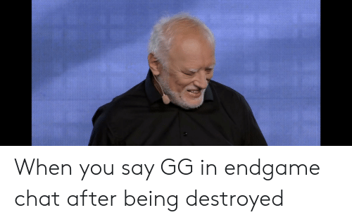 When You Say GG in Endgame Chat After Being Destroyed   Gg