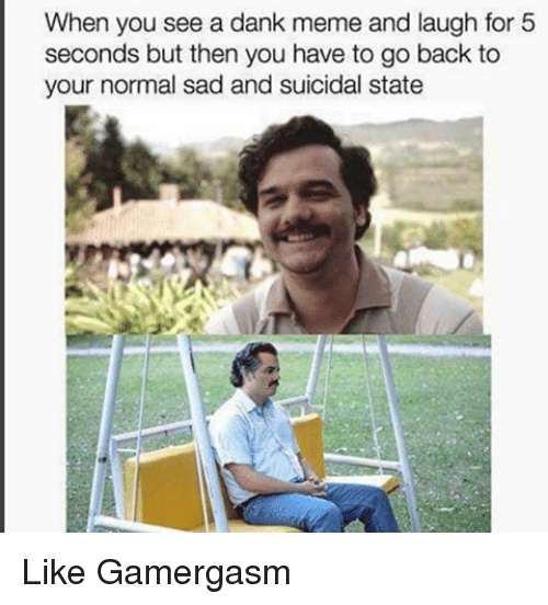 Dank, Meme, and Memes: When you see a dank meme and laugh for 5  seconds but then you have to go back to  your normal sad and suicidal state Like Gamergasm