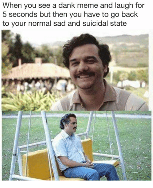 Dank, Meme, and Dank Memes: When you see a dank meme and laugh for  5 seconds but then you have to go back  to your normal sad and suicidal state