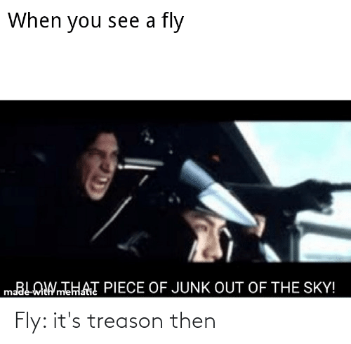 Reddit, Treason, and Sky: When you see a fly  maLOIWTHAT PIECE OF JUNK OUT OF THE SKY!  madė-with'mematic Fly: it's treason then
