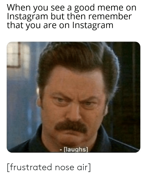 When You See a Good Meme on Instagram but Then Remember That
