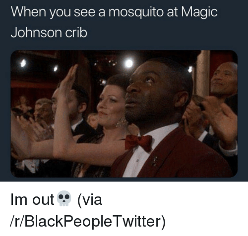 Blackpeopletwitter, Magic Johnson, and Magic: When you see a mosquito at Magic  Johnson crib <p>Im out💀 (via /r/BlackPeopleTwitter)</p>