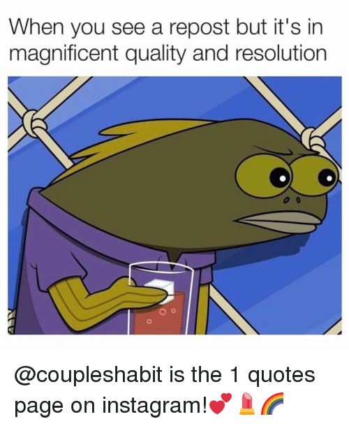 Instagram, Memes, and Quotes: When you see a repost but it's in  magnificent quality and resolution @coupleshabit is the 1 quotes page on instagram!💕💄🌈