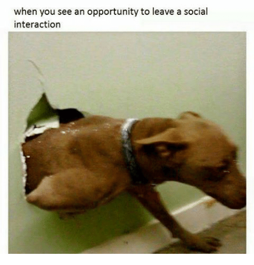 Funny, Opportunity, and You: when you see an opportunity to leave a social  interaction