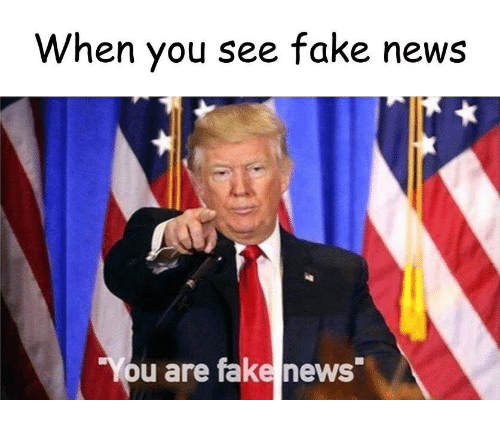 "Fake, News, and You: When you see fake news  ""You are fake news"