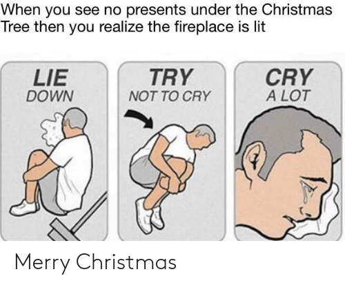 Christmas, Lit, and Reddit: When you see no presents under the Christmas  Tree then you realize the fireplace is lit  LIE  TRY  CRY  A LOT  DOWN  NOT TO CRY Merry Christmas