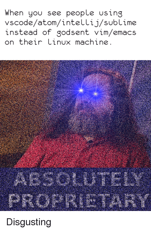 When You See People Using Vscodeatomintellijsublime Instead of