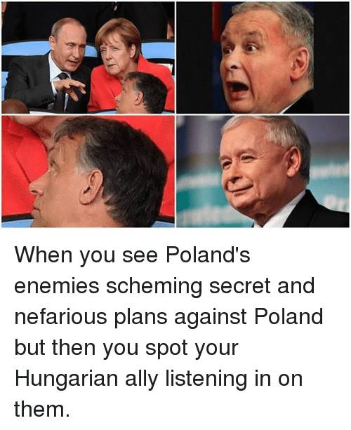 when you see polands enemies scheming secret and nefarious plans 29936116 ✅ 25 best memes about pyramid scheme meme pyramid scheme memes
