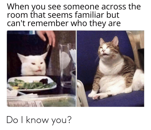 Who, Remember, and They: When you see someone across the  room that seems familiar but  can't remember who they Do I know you?