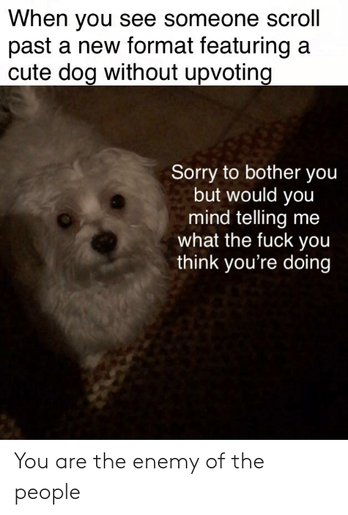 Cute, Fuck You, and Sorry: When you see someone scroll  past a new format featuring a  cute dog without upvoting  Sorry to bother you  but would you  mind telling me  what the fuck you  think you're doing You are the enemy of the people