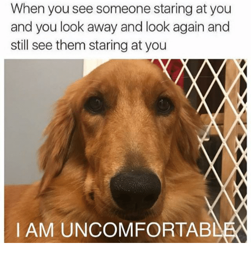 Memes, 🤖, and Them: When you see someone staring at you  and you look away and look again and  still see them staring at you  IAM UNCOMFORTABL