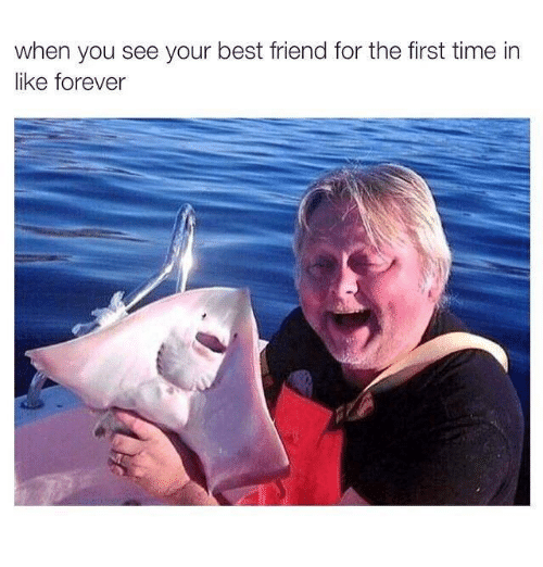 🔥 25+ Best Memes About When You See Your Best Friend | When You See