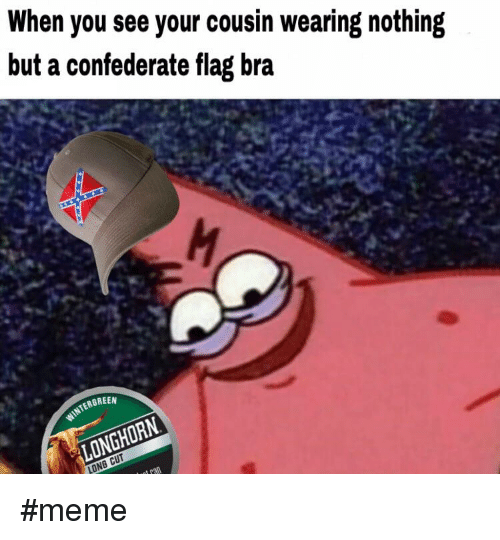 🔥 25+ Best Memes About Confederate Flag, Confederate, and ...