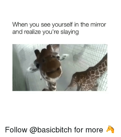 Mirror, Girl Memes, and You: When you see yourself in the mirror  and realize you're slaying Follow @basicbitch for more 🦒