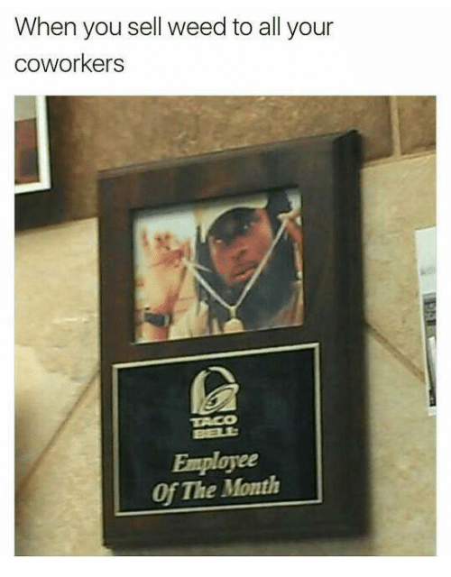 Home Market Barrel Room Trophy Room ◀ Share Related ▶ memes Weed Coworkers 🤖 all employee of the month you when you month When Employee The next collect meme → Embed it next → When you sell weed to all your coworkers Employee Of The Month Meme memes Weed Coworkers 🤖 all employee of the month you when you month When Employee The Your memes memes Weed Weed Coworkers Coworkers 🤖 🤖 all all employee of the month employee of the month you you when you when you month month When When Employee Employee The The Your Your found @ 8 likes ON 2018-03-01 08:14:27 BY me.me source: facebook view more on me.me