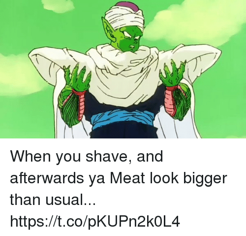 Blackpeopletwitter, Meat, and You: When you shave, and afterwards ya Meat look bigger than usual... https://t.co/pKUPn2k0L4