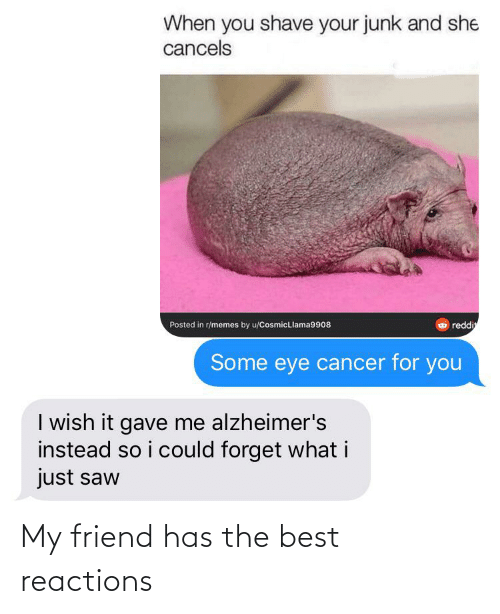Memes, Reddit, and Saw: When you shave your junk and she  cancels  Posted in r/memes by u/CosmicLlama9908  reddi  Some eye cancer for you  I wish it gave me alzheimer's  instead so i could forget what i  just saw My friend has the best reactions