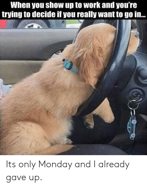 Work, Monday, and You: When you show up to work and you're  trying to decide if you really want to go in... Its only Monday and I already gave up.