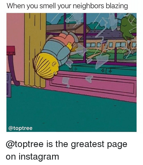 Instagram, Smell, and Neighbors: When you smell your neighbors blazing  0  @toptree @toptree is the greatest page on instagram