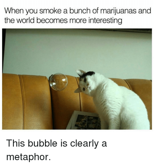 Funny, Metaphor, and The World: When  you smoke a bunch of marijuanas and  the world becomes more interesting This bubble is clearly a metaphor.