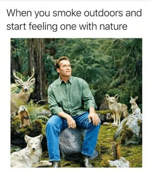 Memes, Nature, and 🤖: When you smoke outdoors and  start feeling one with nature
