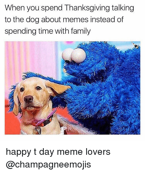 when you spend thanksgiving talking to the dog about memes 7256017 ✅ 25 best memes about meme lover meme lover memes,Meme Lover