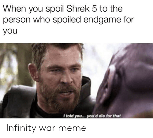 Meme, Shrek, and Infinity: When you spoil Shrek 5 to the  person who spoiled endgame for  you  I told you... you'd die for that Infinity war meme