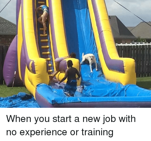 When You Start A New Job With No Experience Or Training Funny Meme