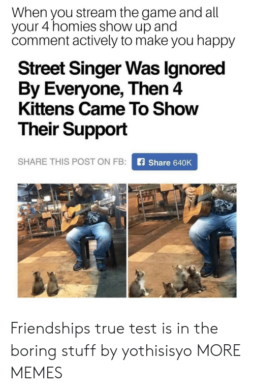 Dank, Memes, and Target: When you stream the game and all  your 4 homies show up and  comment actively to make you happy  Street Singer Was lgnored  By Everyone, Then 4  Kittens Came To Show  Their Support  SHARE THIS POST ON FB  Share 640K Friendships true test is in the boring stuff by yothisisyo MORE MEMES