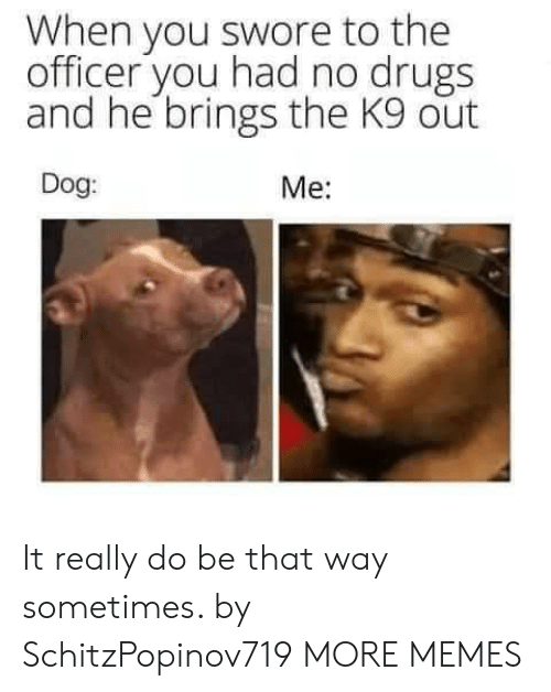 Dank, Drugs, and Memes: When you swore to the  officer you had no drugs  and he brings the K9 out  Dog:  Me: It really do be that way sometimes. by SchitzPopinov719 MORE MEMES