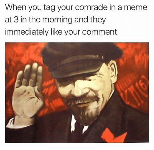 Meme, They, and You: When you tag your comrade in a meme  at 3 in the morning and they  immediately likeyour comment
