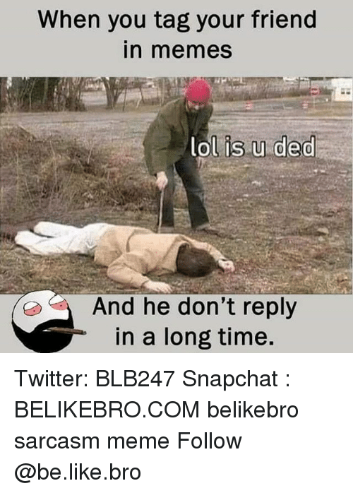 Be Like, Lol, and Meme: When you tag your friend  n memes  lol is u ded  And he don't reply  in a long time. Twitter: BLB247 Snapchat : BELIKEBRO.COM belikebro sarcasm meme Follow @be.like.bro