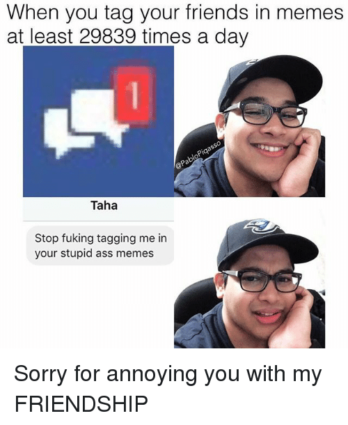 Ass, Friends, and Memes: When you tag your friends in memes  at least 29839 times a day  pia  OP  Taha  Stop fuking tagging me in  your stupid ass memes Sorry for annoying you with my FRIENDSHIP