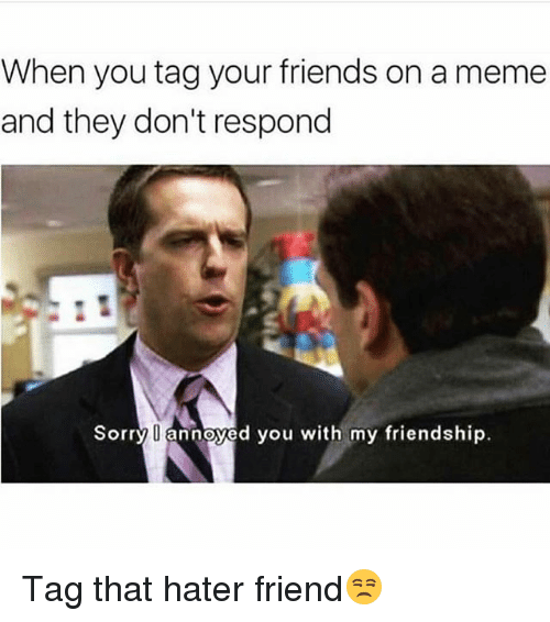 Friends, Funny, and Meme: When you tag your friends on a meme  and they don't respond  Sorry  annoyed you with my friendship. Tag that hater friend😒