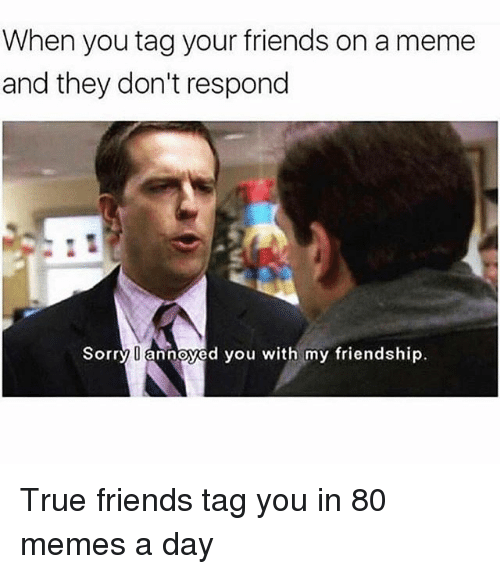 Friends, Meme, and Memes: When you tag your friends on a meme  and they don't respond  Sorry annoyed you with my friendship True friends tag you in 80 memes a day