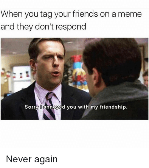 Friends, Meme, and Memes: When you tag your friends on a meme  and they don't respond  Sorry annoyed you with my friendship. Never again