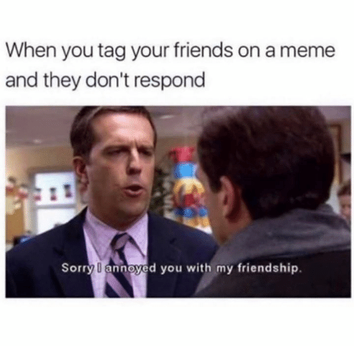 Friends, Meme, and Sorry: When you tag your friends on a meme  and they don't respond  Sorry annoyed you with my friendship.