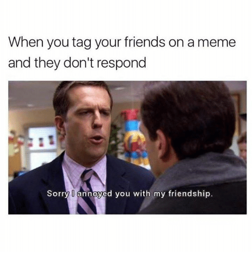 Dank, Friends, and Sorry: When you tag your friends on ameme  and they don't respond  Sorry O annoyed you with my friendship.