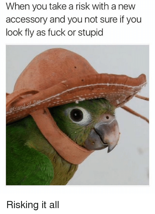 Funny, Fuck, and Girl Memes: When you take a risk with a new  accessory and you not sure if you  look fly as fuck or stupid Risking it all