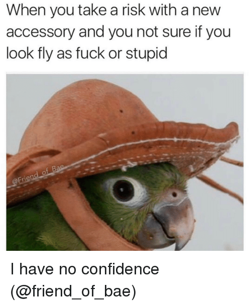 Bae, Confidence, and Funny: When you take a risk with anew  accessory and you not sure if you  look fly as fuck or stupid I have no confidence (@friend_of_bae)
