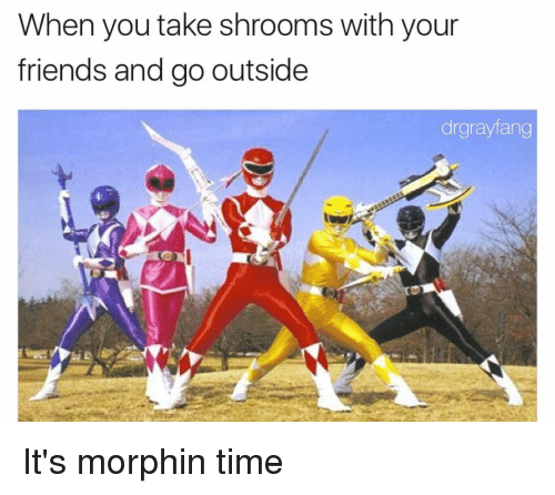 [Image: when-you-take-shrooms-with-your-friends-...037847.png]