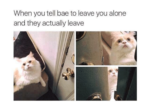 Being Alone, Bae, and Relationships: When you tell bae to leave you alone  and they actually leave