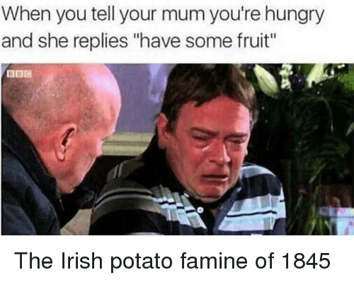 """Hungry, Irish, and Potato: When you tell your mum you're hungry  and she replies """"have some fruit"""" The Irish potato famine of 1845"""
