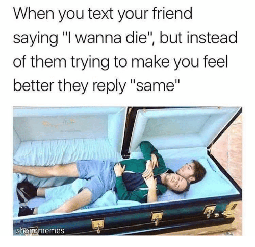 "Text, Friend, and Them: When you text your friend  saying ""I wanna die"", but instead  of them trying to make you feel  better they reply ""same""  shamememes"