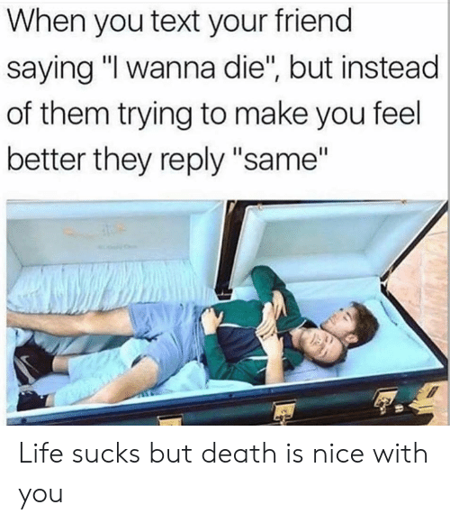 """Life, Memes, and Death: When you text your friend  saying """"I wanna die"""", but instead  of them trying to make you feel  better they reply """"same"""" Life sucks but death is nice with you"""