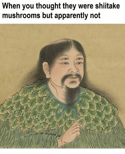 Apparently, Classical Art, and Thought: When you thought they were shiitake  mushrooms but apparently not