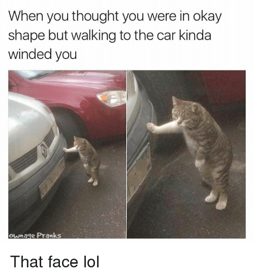 Lol, Memes, and Prank: When you thought you were in okay  shape but walking to the car kinda  winded you  ownage Prank That face lol
