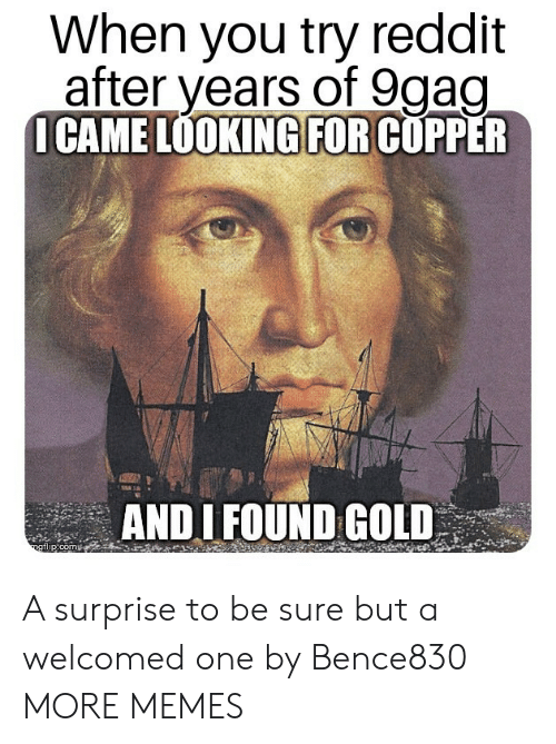 Dank, Memes, and Reddit: When you try reddit  after vears of 9aao  ICAME LOOKING FOR COPPER  ANDI FOUND GOLD  ogflip:com A surprise to be sure but a welcomed one by Bence830 MORE MEMES