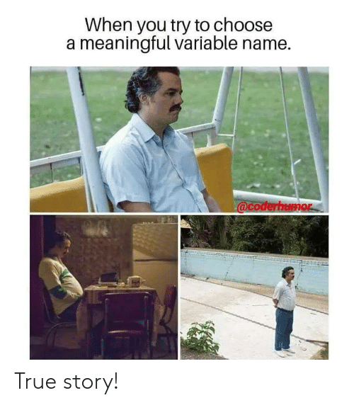 True, True Story, and Name: When you try to choose  a meaningful variable name True story!